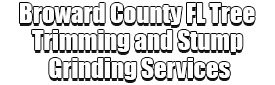 Broward County FL Tree Trimming and Stump Grinding Services Logo-We Offer Tree Trimming Services, Tree Removal, Tree Pruning, Tree Cutting, Residential and Commercial Tree Trimming Services, Storm Damage, Emergency Tree Removal, Land Clearing, Tree Companies, Tree Care Service, Stump Grinding, and we're the Best Tree Trimming Company Near You Guaranteed!